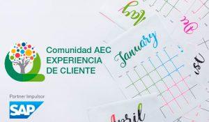 Planificación Comunidad Experiencia Cliente AEC